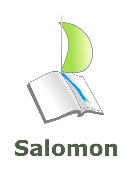 logo salomon tekst
